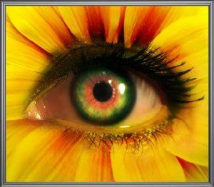 eye flowe